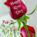 happy-rose-day